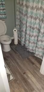 lvp bathroom remodel