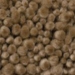 moon shadows Soft Umber