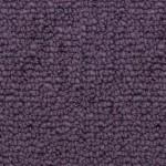 presidio purple haze