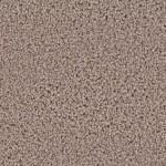 incredible ll hampsire gray