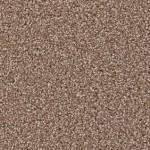 incredible ll shaker beige