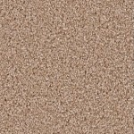 incredible ll tyler taupe