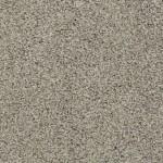 latest trend ash