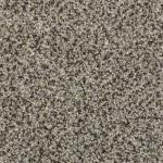 latest trend graystone