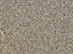 Hundred Count ll by Woolshire Carpet 100 count auckland