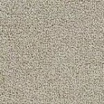 Hundred Count ll by Woolshire Carpet 100 count canterbury