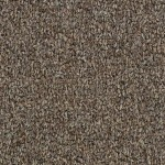 Hundred Count ll by Woolshire Carpet 100 count nelson