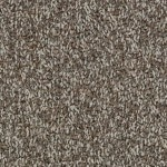 Hundred Count ll by Woolshire Carpet 100 count taranaki