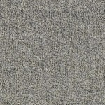 Hundred Count ll by Woolshire Carpet 100 count westland