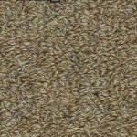 Hundred Count by Woolshire Carpet 100 ct burlap