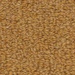 Hundred Count by Woolshire Carpet 100 ct gold sisal