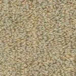 Hundred Count by Woolshire Carpet 100 ct jw beige