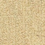 Hundred Count by Woolshire Carpet 100 ct oatmeal