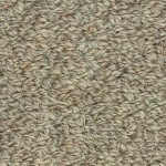 Hundred Count by Woolshire Carpet 100 ct village thatch