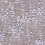 Paradise by Woolshire Carpet paradise sand dollar