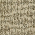 Slubs N Nubs by Woolshire Carpet pompano