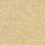 Venice by Woolshire Carpet venice pomona