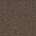 Mohawk Group Mindful Carpet Tile color Hickory