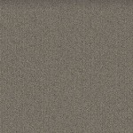Mohawk Group Mindful Carpet Tile color Nickel