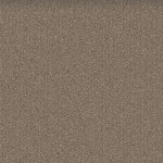 Mohawk Group Mindful Carpet Tile color Praline