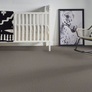 anderson tuftex after hours carpet main img