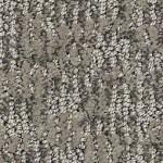 anderson tuftex alante carpet