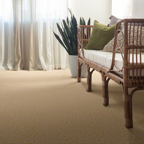 anderson tuftex alante carpet main im