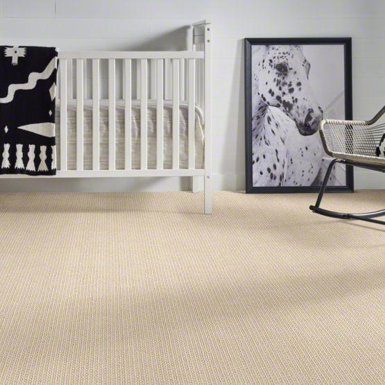 anderson tuftex chapel ridge carpet main img