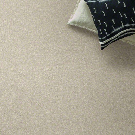 anderson tuftex cooper carpet main img