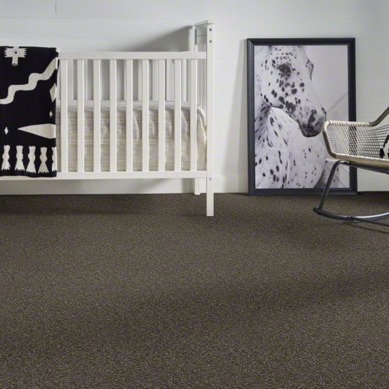 anderson tuftex emotions carpet main img