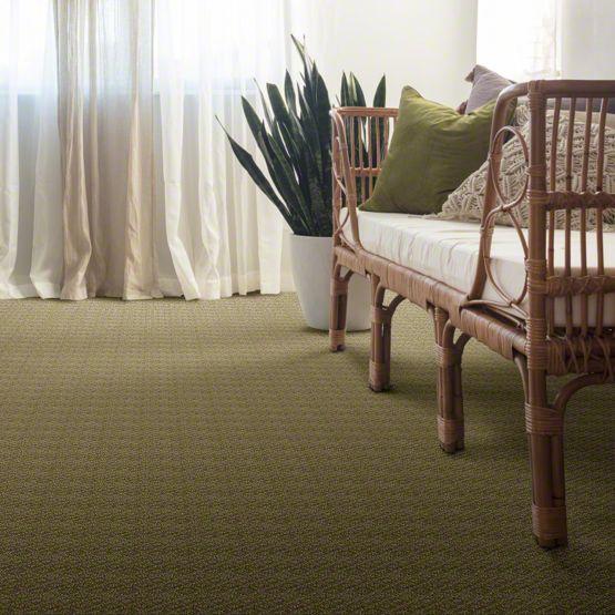 anderson tuftex esplanade carpet main img