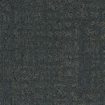 MOHAWK EXQUISITE PORTRAIT TRANQUIL BAY